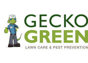 McKinney lawn care service Gecko Green