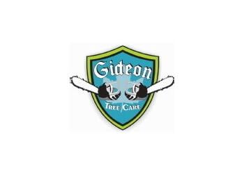 Chandler tree service Gideon Tree Care