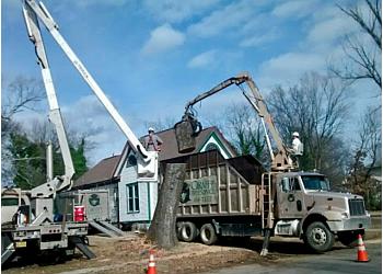 Little Rock tree service Giraffe Tree Services
