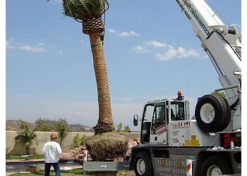 Simi Valley tree service Gold Coast Tree Service