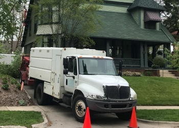 Grand Rapids tree service Good Earth Tree Care LLC