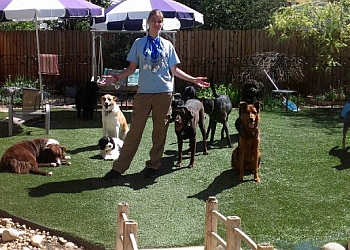 Aurora dog walker Good Neighbors Pet Care