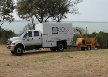 Waco tree service Goss Tree Service