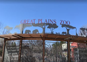 Sioux Falls places to see Great Plains Zoo & Delbridge Museum of Natural History