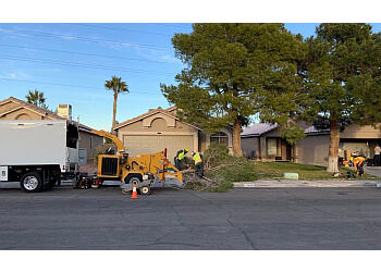 Henderson landscaping company Green America Tree & Landscaping