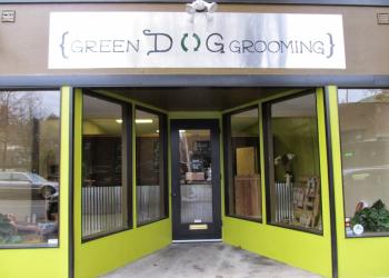 Kent pet grooming Green Dog Grooming