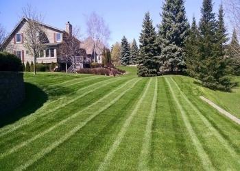 Charlotte lawn care service GreenPal Lawn Care of Charlotte