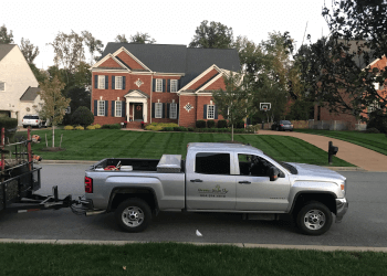 Richmond landscaping company Green Side Up Landscaping