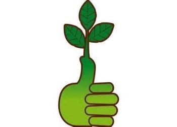 Detroit lawn care service Green Thumb Property Maintenance