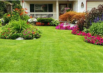 Norfolk lawn care service Green Top Lawn, LLC.