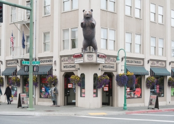 Anchorage gift shop Grizzly's Gifts