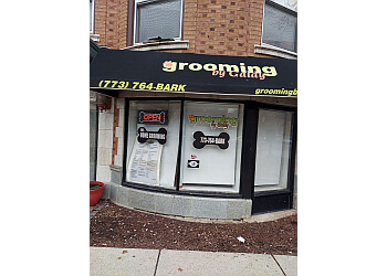 Chicago pet grooming Grooming By Galdy