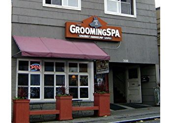 Seattle pet grooming Grooming Spa