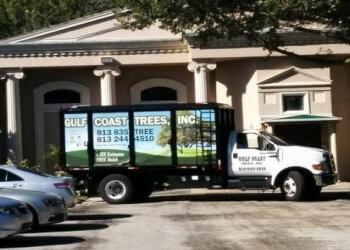 Tampa tree service Gulf Coast Trees, Inc.