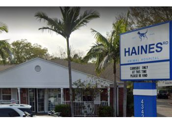 St Petersburg veterinary clinic Haines Road Animal Hospital