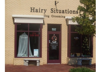 Alexandria pet grooming Hairy Situations Dog Grooming
