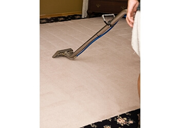 Yonkers carpet cleaner Halo Carpet Services