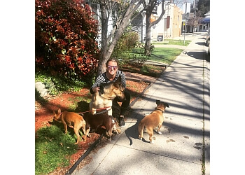 Sacramento dog walker Happy Feet Pet Sitting