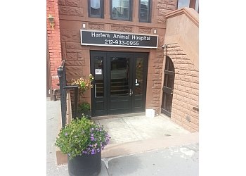 New York veterinary clinic Harlem Animal Hospital