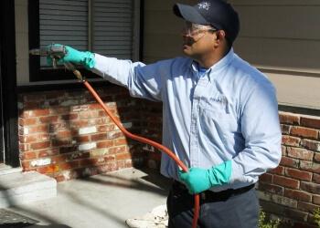3 Best Pest Control Companies In Modesto Ca Threebestrated