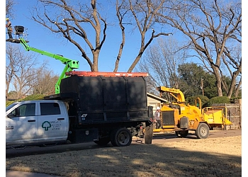 Abilene tree service Haught's Tree Service