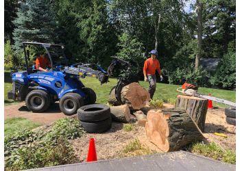 Madison tree service Heartwood Tree Company