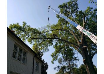 Charlotte tree service Heartwood Tree Service LLC.