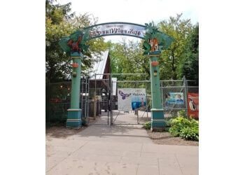 Madison places to see Henry Vilas Zoo