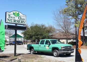 McKinney tree service Heritage Tree Service