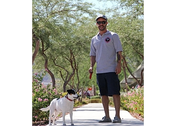 Las Vegas dog walker High 5 Pet Care