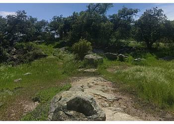 Santa Ana hiking trail Black Star Canyon Trail