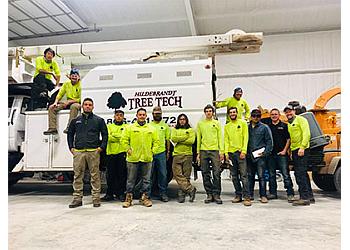 Lubbock tree service Hildebrandt Tree Tech