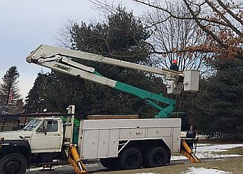 Pittsburgh tree service Hoffman's Tree Service & Landscaping