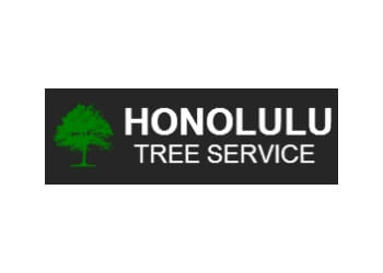 Honolulu tree service Honululu Tree Service