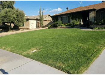 Chandler lawn care service House of Yards