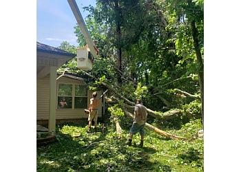 Murfreesboro tree service Hughes Tree Service