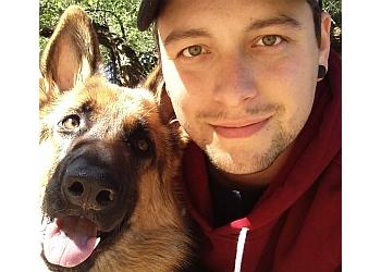 Wichita dog walker ICT Pet Care