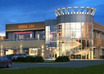 Irving indian restaurant INDIA 101
