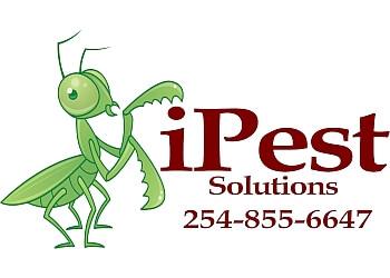 Waco pest control company IPest Solutions