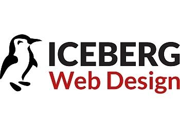Minneapolis web designer Iceberg Web Design