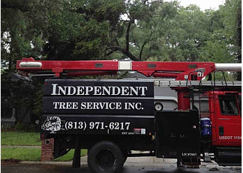 Tampa tree service Independent Tree Service, Inc.