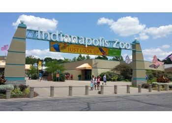 Indianapolis places to see Indianapolis Zoo