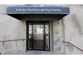 New York dog training Instinct Dog Behavior & Training