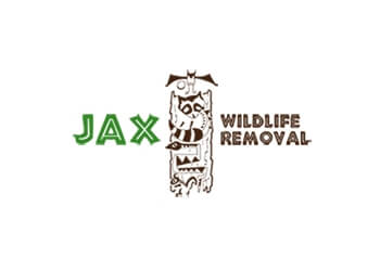Jacksonville animal removal JAX Wildlife Removal