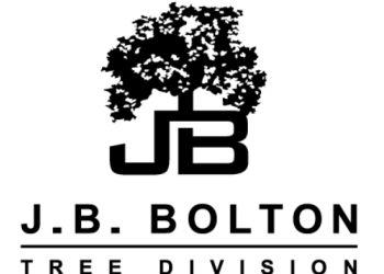 Scottsdale tree service JB Bolton Tree Division