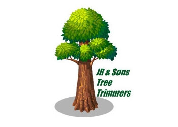 Salinas tree service JR & Sons Tree Trimmers