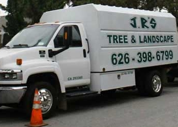 Pasadena tree service JR's Tree Service and Landscape