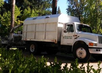 Fremont tree service JTS Tree Expert, INC