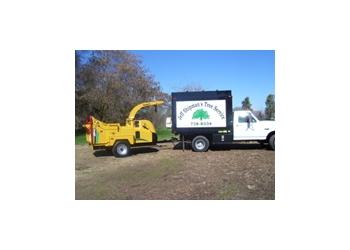 Visalia tree service Jeff Shipman's Tree Service