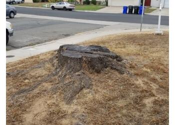 Chula Vista lawn care service Jeffs Lawn Care